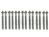 11121740065 VictorReinz Cylinder Head Bolt Set; Set of 14 Bolts; M10x110mm