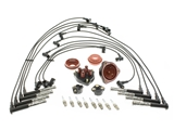 119TUNEUPKIT AAZ Preferred Ignition Tune-Up Kit; KIT