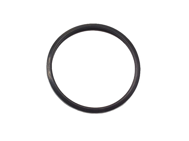1634650010 Nippon Reinz Thermostat Seal