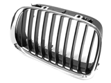 51138159315OE Genuine BMW Grille; Front Left; Black
