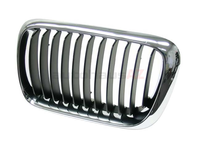 51138195151 Genuine BMW Grille; Left