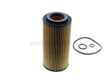 6131800009 Mahle Oil Filter Kit