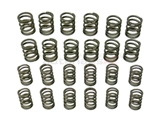 90110590150HP Aasco Motorsports Valve Spring; High Performance Set
