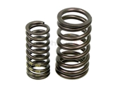 BM-11317830890 Genuine BMW Valve Spring