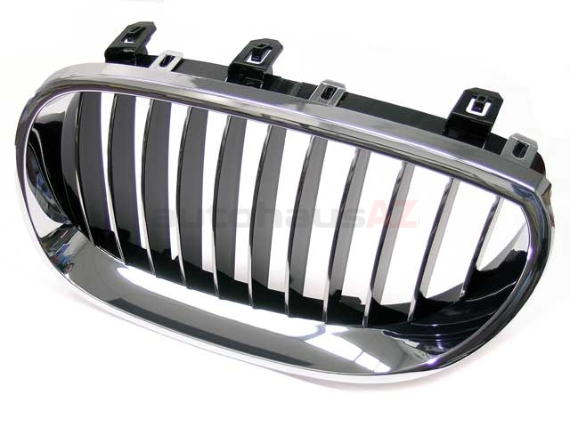 51137065701 Genuine BMW Grille; Front Left