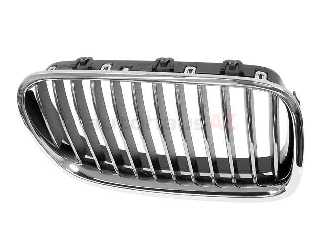 BM-51137203650 Genuine BMW Grille; Right