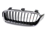 BM-51137255411 Genuine BMW Grille