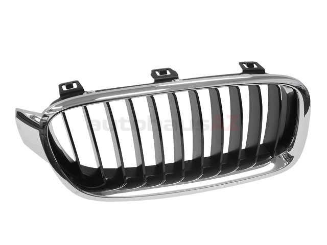 BM-51137255412 Genuine BMW Grille
