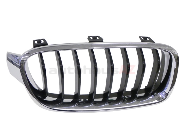 BM-51137260498 Genuine BMW Grille; Right