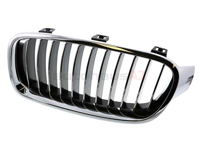 BM-51137263481 Genuine BMW Grille