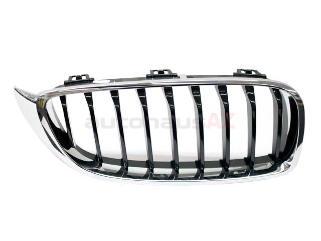51137294818 Genuine BMW Grille; Front Right