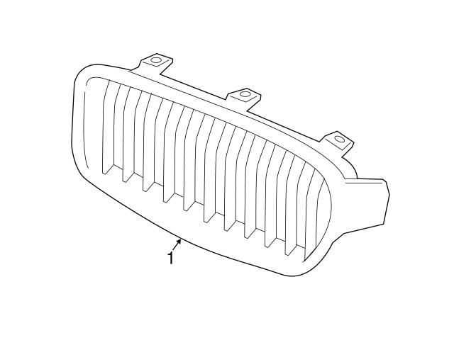 51137294820 Genuine BMW Grille; Front Right