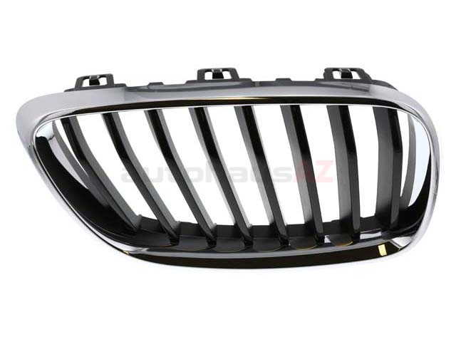 BM-51137295524 Genuine BMW Grille