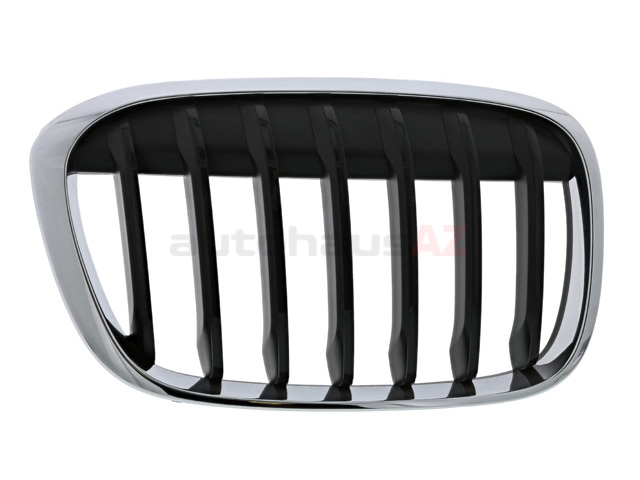BM-51137354824 Genuine BMW Grille