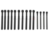 11127574303 Victor Reinz Cylinder Head Bolt Set