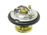 6022000015 Wahler Thermostat