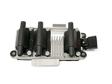 ZSE154 Beru Ignition Coil